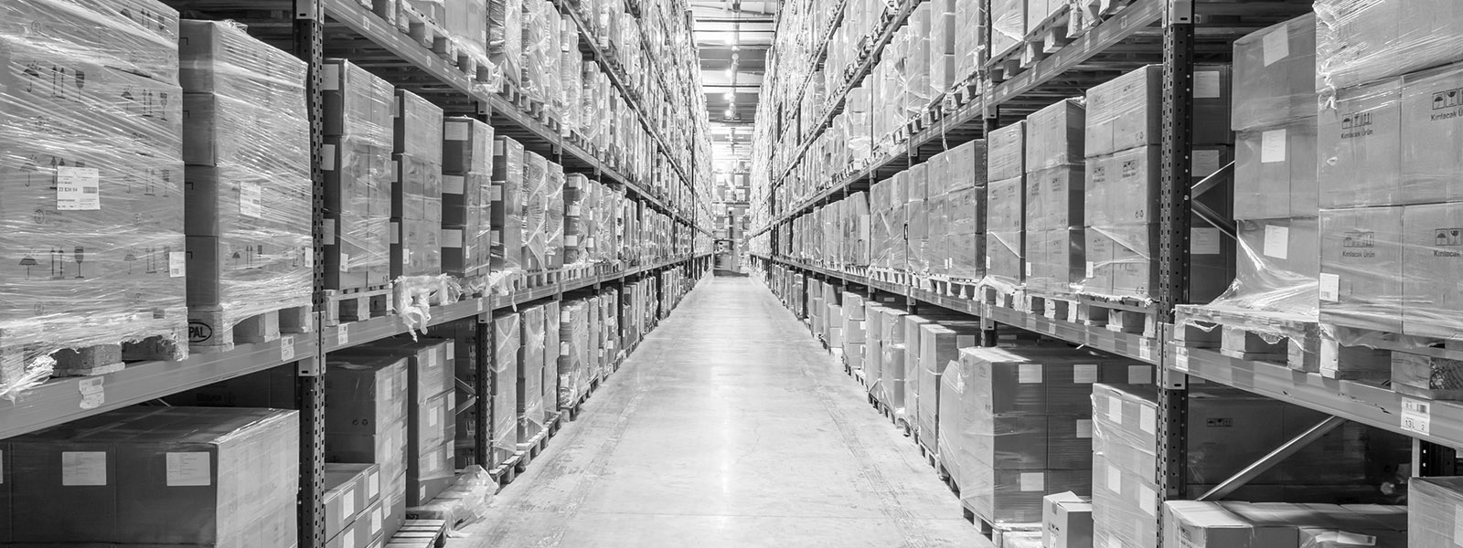 FPT Global Warehousing